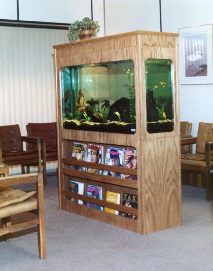 AquaLease Calgarys Premier Custom Aquarium Lease Maintenance Company