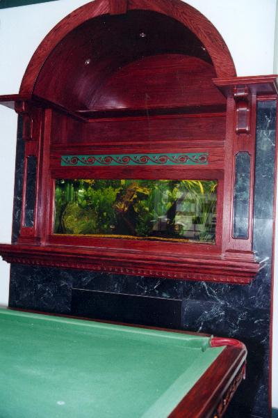 Aqualease calgary 39 s premier custom aquarium lease for Fish tank fireplace